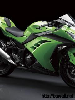 Kawasaki Ninja 250 2013 Full Size