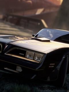1977 Pontiac Firebird Trans Am Special Edition Full Size