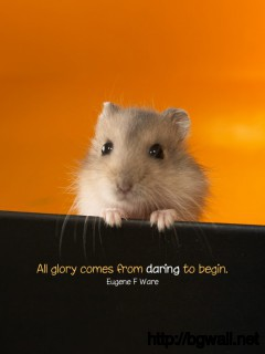 All Glory Comes From Daring To Begin Full Size