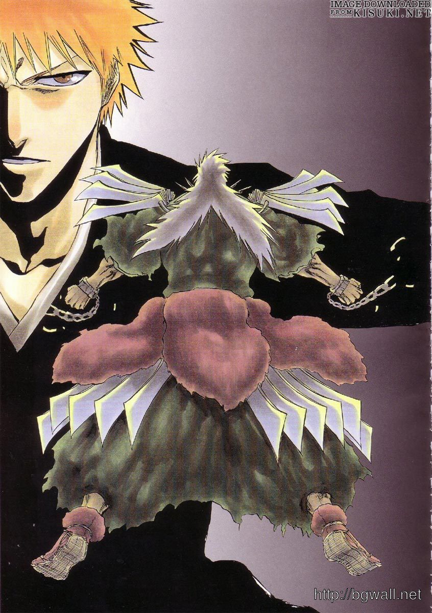 Artbooks Bleach All Colours But The Black Item 78 Full Size