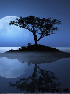 Blue Moon Over The Water Evening Scene Wallpaper Full Size