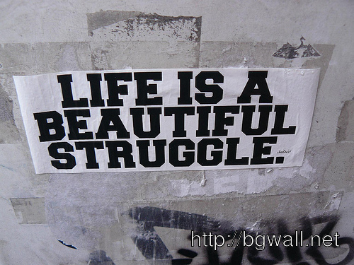 life is full of struggle essay Essays - largest database of quality sample essays and research papers on essay on life is struggle.