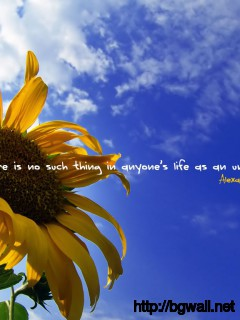 There Is No Such Thing In Anyones Life As An Unimportant Day Full Size
