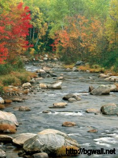 Autumn Colors White Mountains New Hampshire Full Size