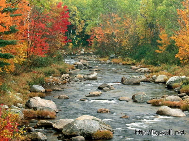Autumn Colors White Mountains New Hampshire