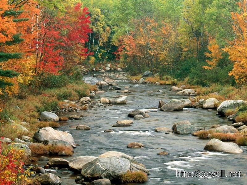 Autumn Colors White Mountains New Hampshire