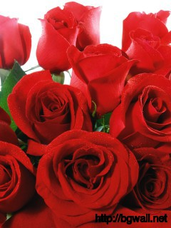 Bouquet Of Red Roses Wallpaper 1847 Full Size