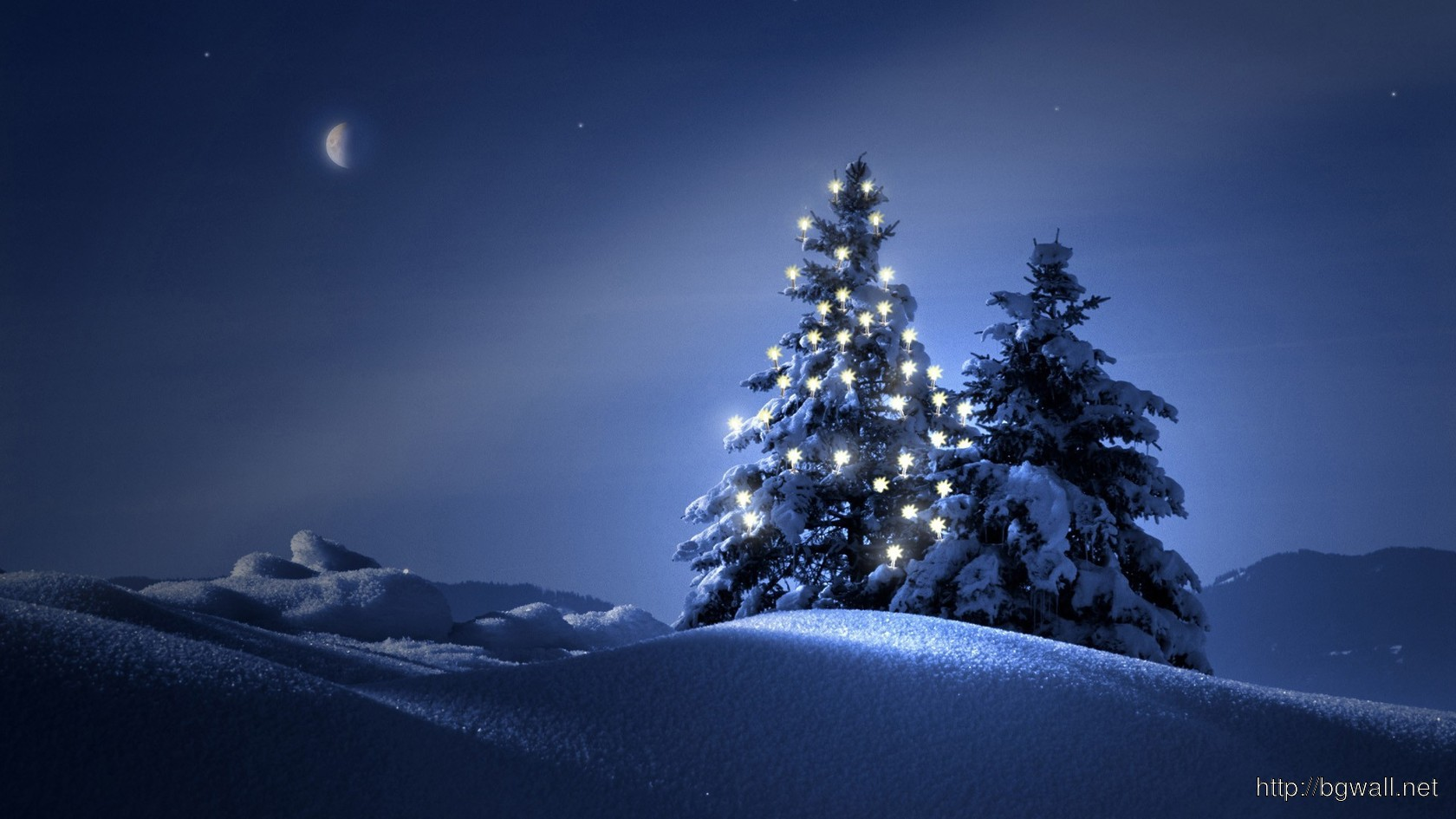 Christmas Trees In The Snow Wallpaper 4058 Full Size
