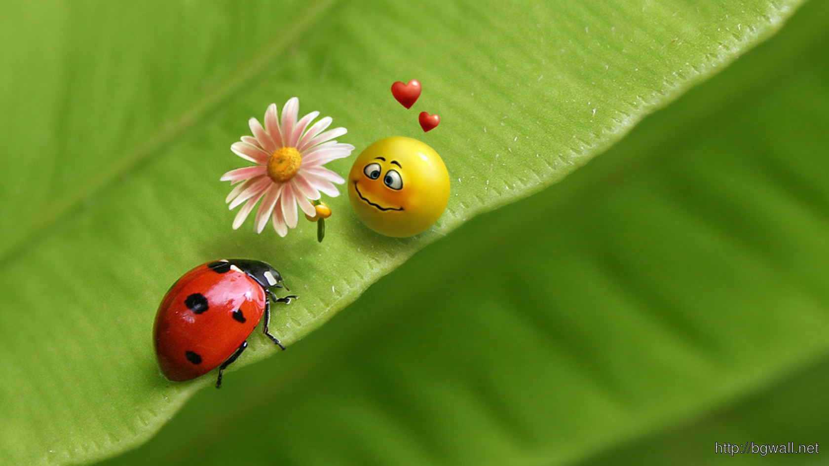Download Ladybug And Smiley Face In Love Wallpaper