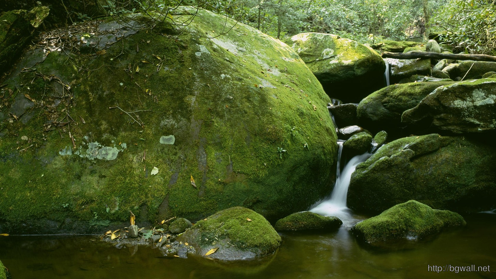 Download Roaring Fork Great Smoky Mountains National Park Wallpaper Full Size