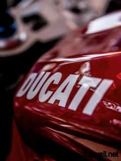 Ducati Logo Wallpaper Full Size