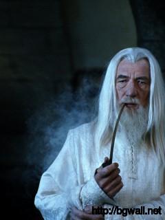 Gandalf The Grey Full Size