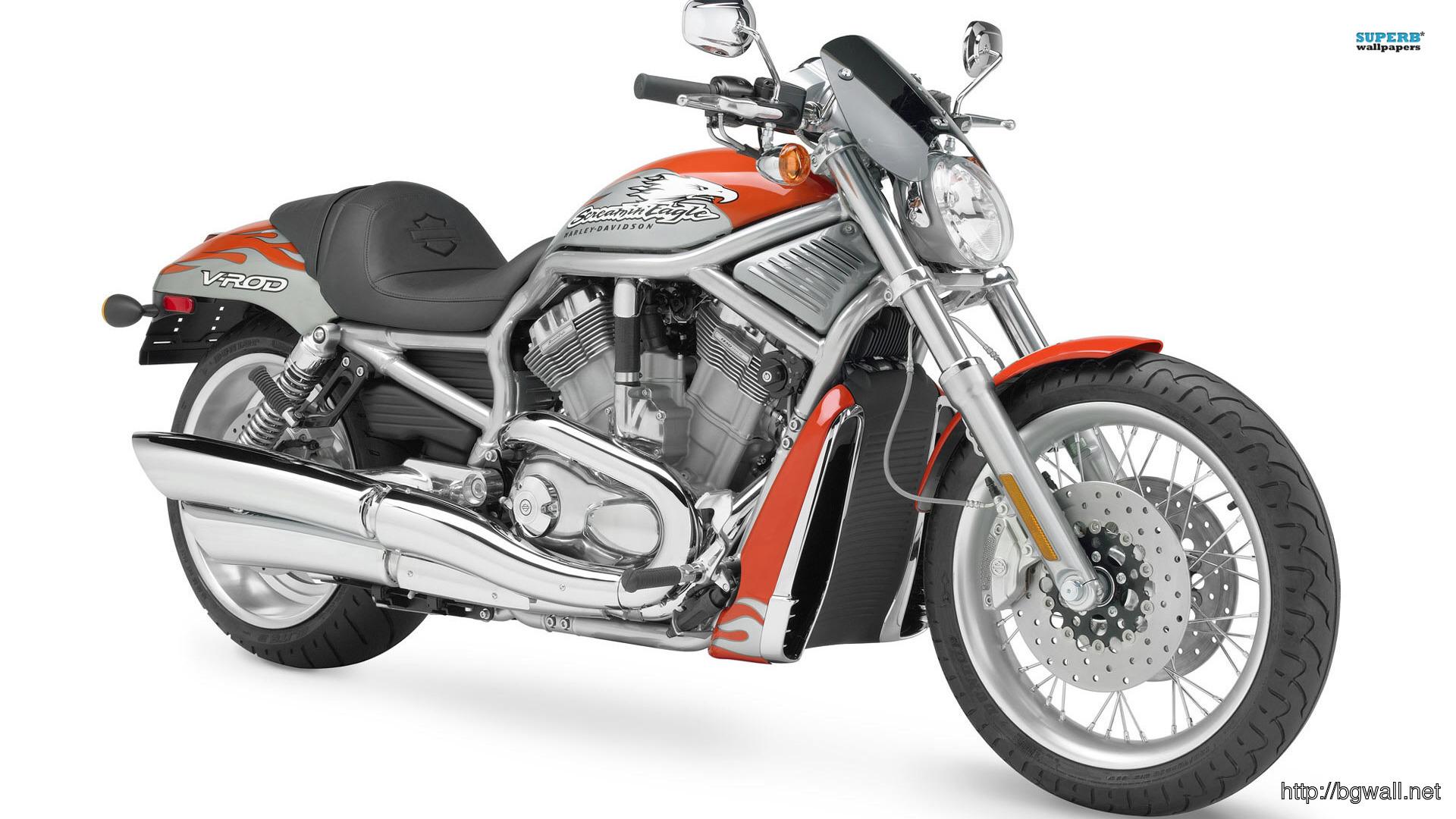 Harley Davidson Vrscf V Full Size