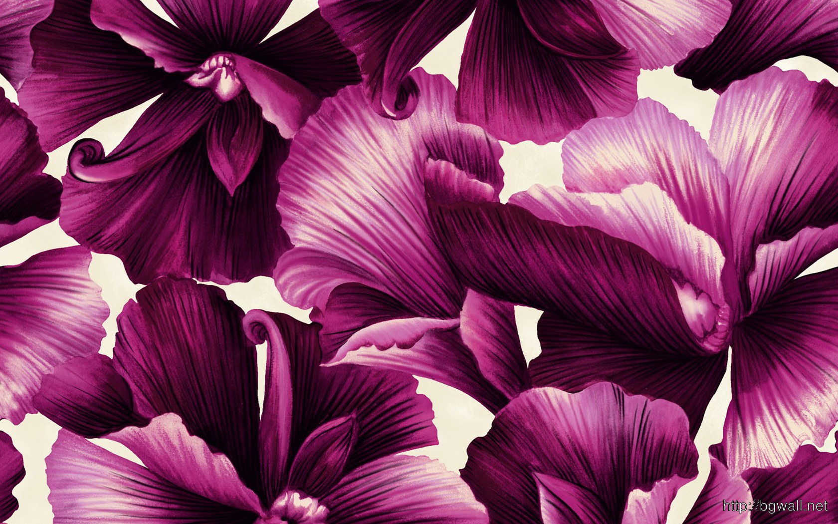 Hd Flower Illustrations Design Full Size