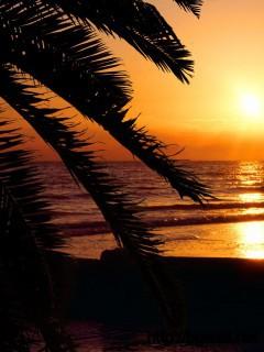 Madeira Beach Florida Full Size