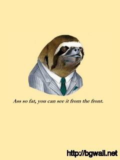 Sloth Wallpaper 16584 Full Size