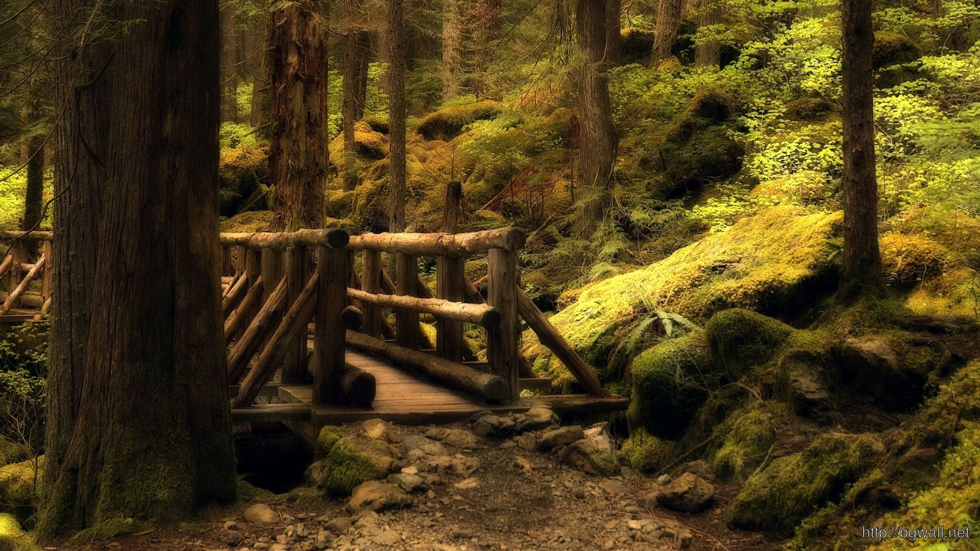 Small Wooden Bridge In The Forest Wallpaper 3362 Full Size