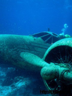Sunken Plane Aruba Full Size