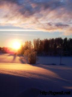 Sunset On Snowy Field Wallpaper 1188 Full Size