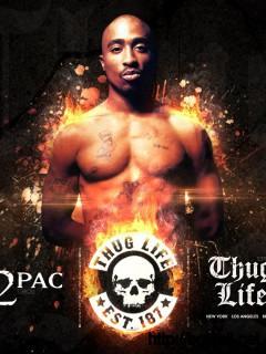 Tupac Shakur Wallpaper 11339 Full Size