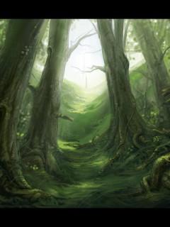 Woods Full Size