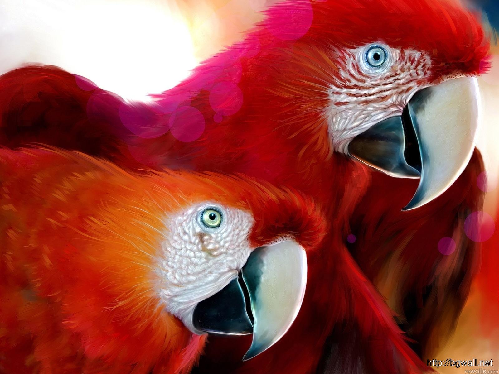 Bird For Ipad Wallpaper