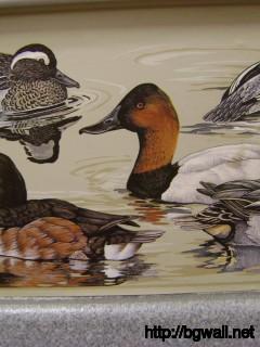 Bird-Themed-Wallpaper