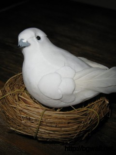 Bird-White-Wallpaper