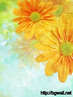 Flowers-Yellow-Art-Wallpaper