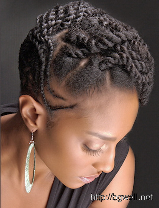 Natural-Black-Hairstyle-Ideas-Twists