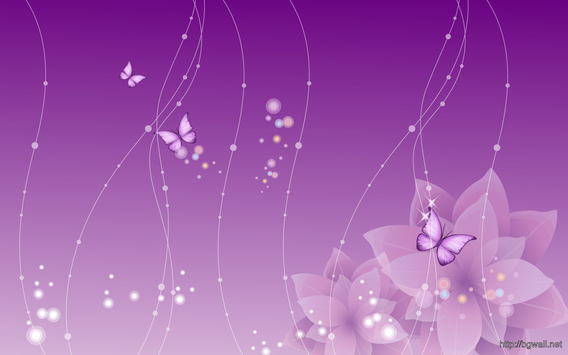 Purple Violet Flowers Backgrounds Wallpaper 1920x1200