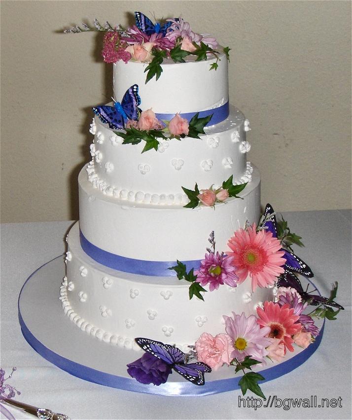 White Rich Cream butterfly cake ideas