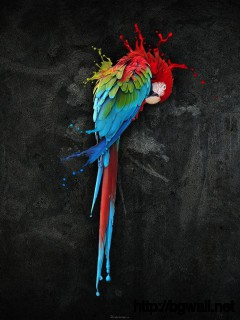 3d-parrot-art-design-wallpaper-background
