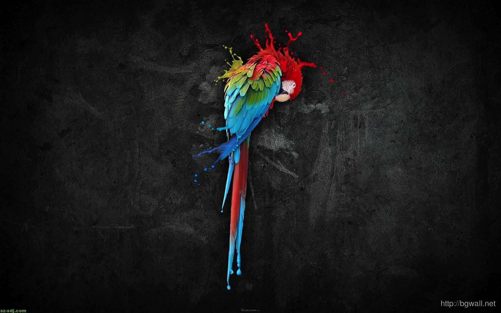3d Parrot Art Design Wallpaper Background –