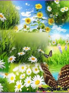 Beautiful-Art-Flowers-Wallpaper-Background