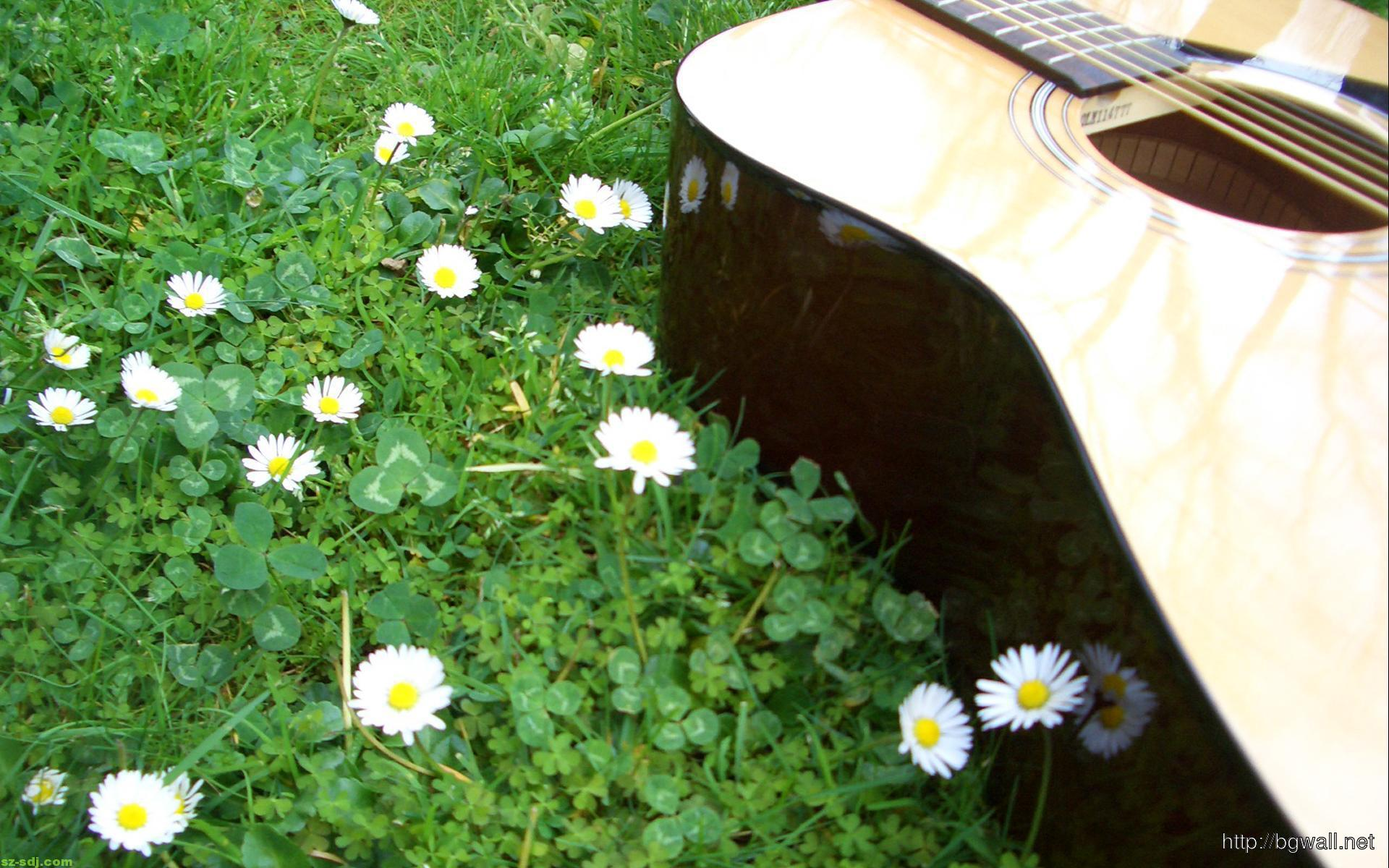 Beautiful-Flowers-And-Acoustic-Guitar-Wallpaper