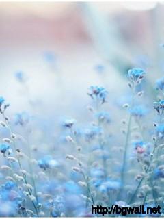 Blue-Flowers-Tumblr-Wallpaper