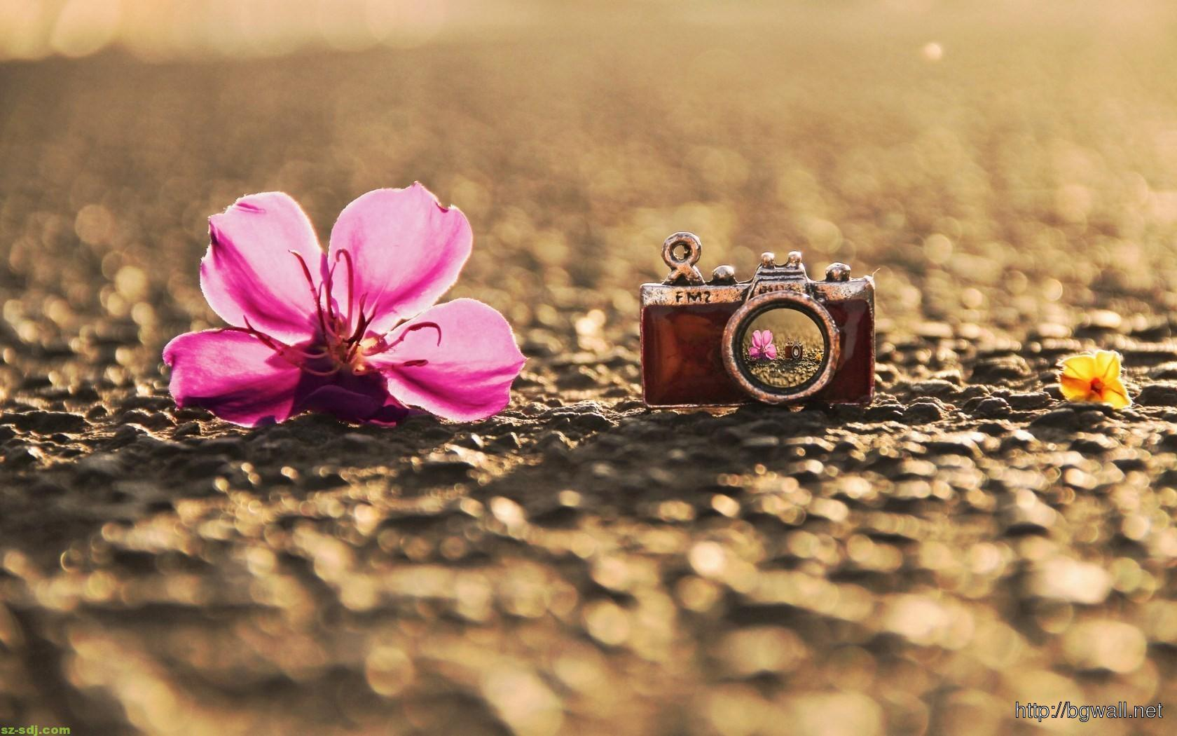 Flower With Pendant Camera Wallpaper