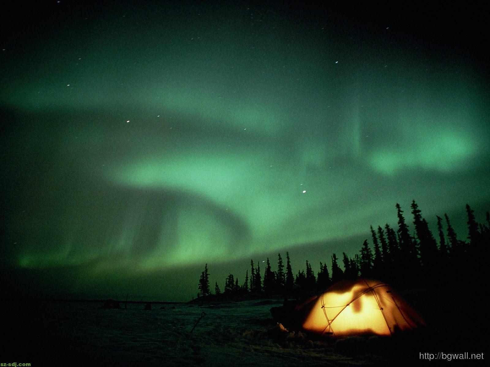 aurora-in-the-forest-desktop-wallpaper