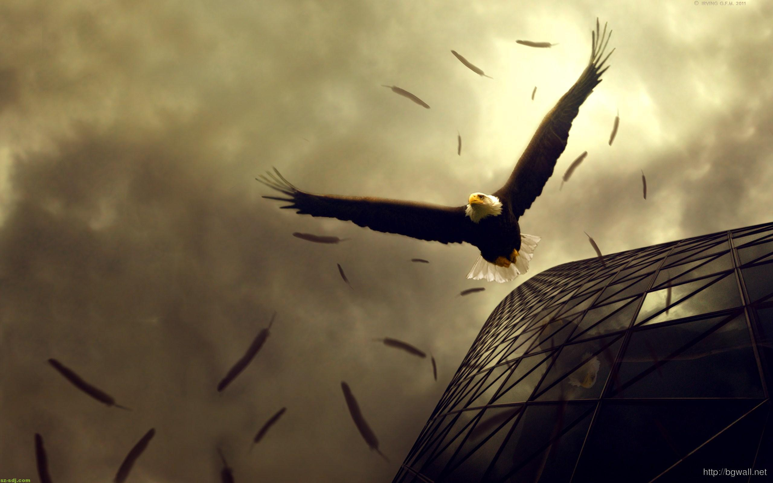 awesome-eagle-flight-wallpaper