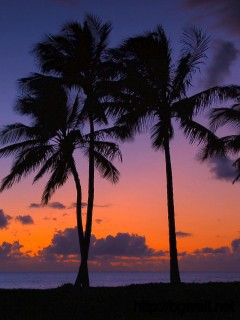best-hawaii-beach-desktop-wallpaper