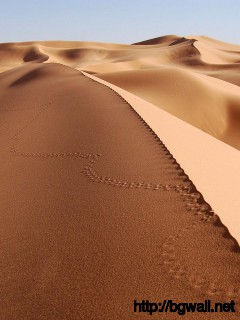 best-sahara-desert-wallpaper-for-desktop