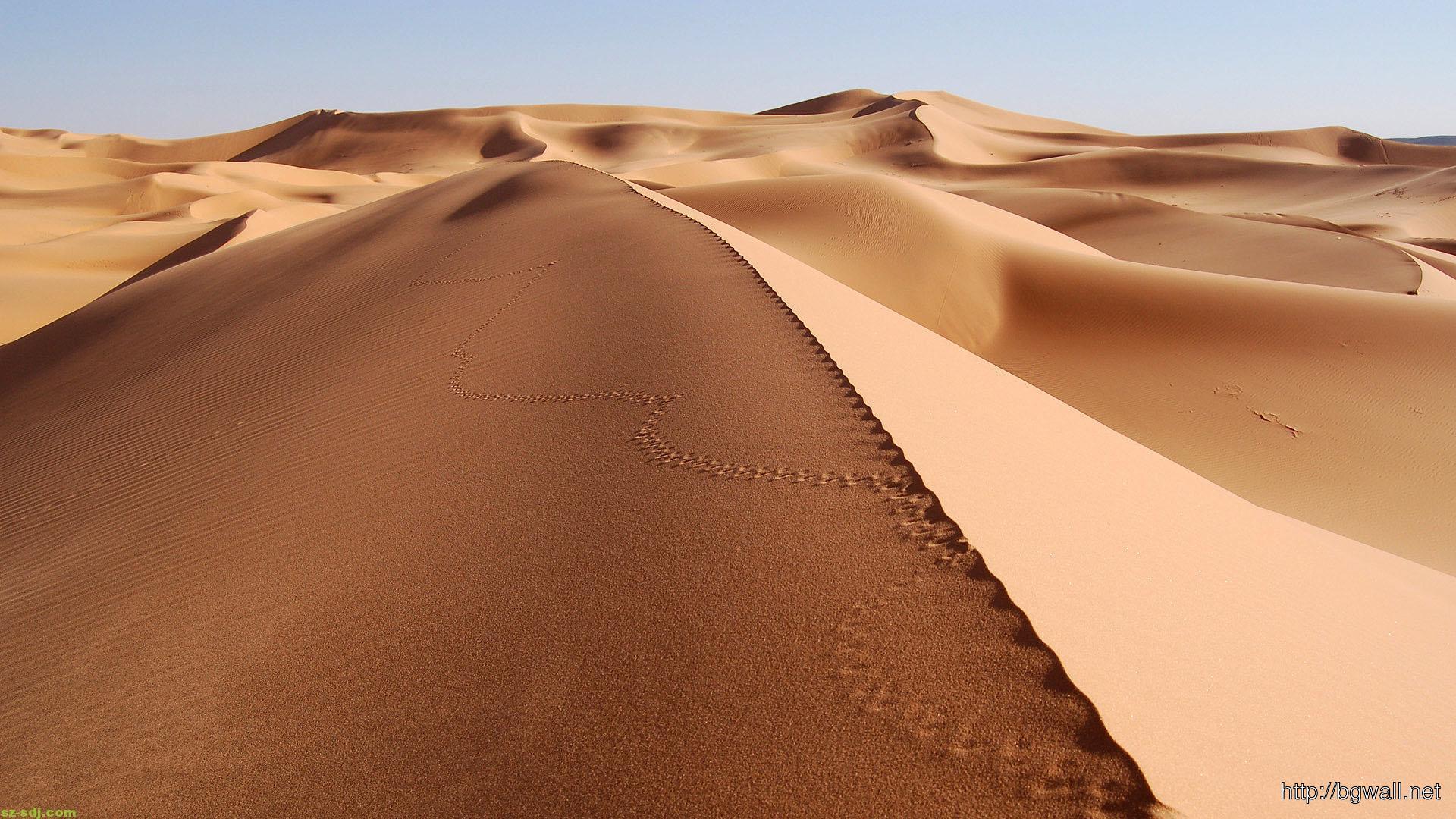 best-sahara-desert-wallpaper-for-desktop