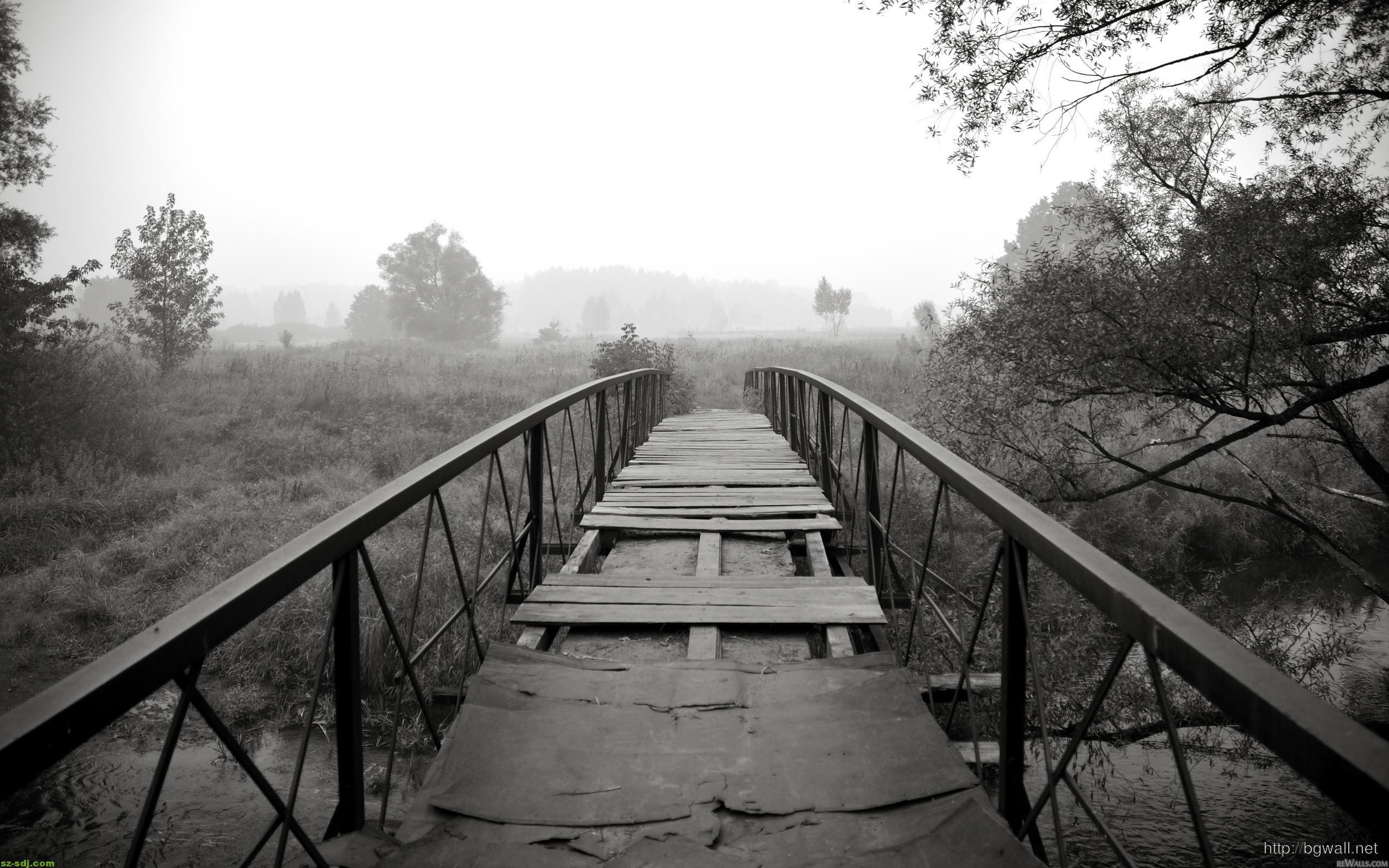Black And White Bridge Nature Wallpaper Computer Background Wallpaper Hd