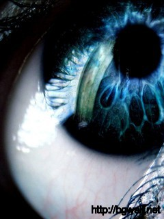 blue-eyes-amazing-close-up-wallpaper-pc