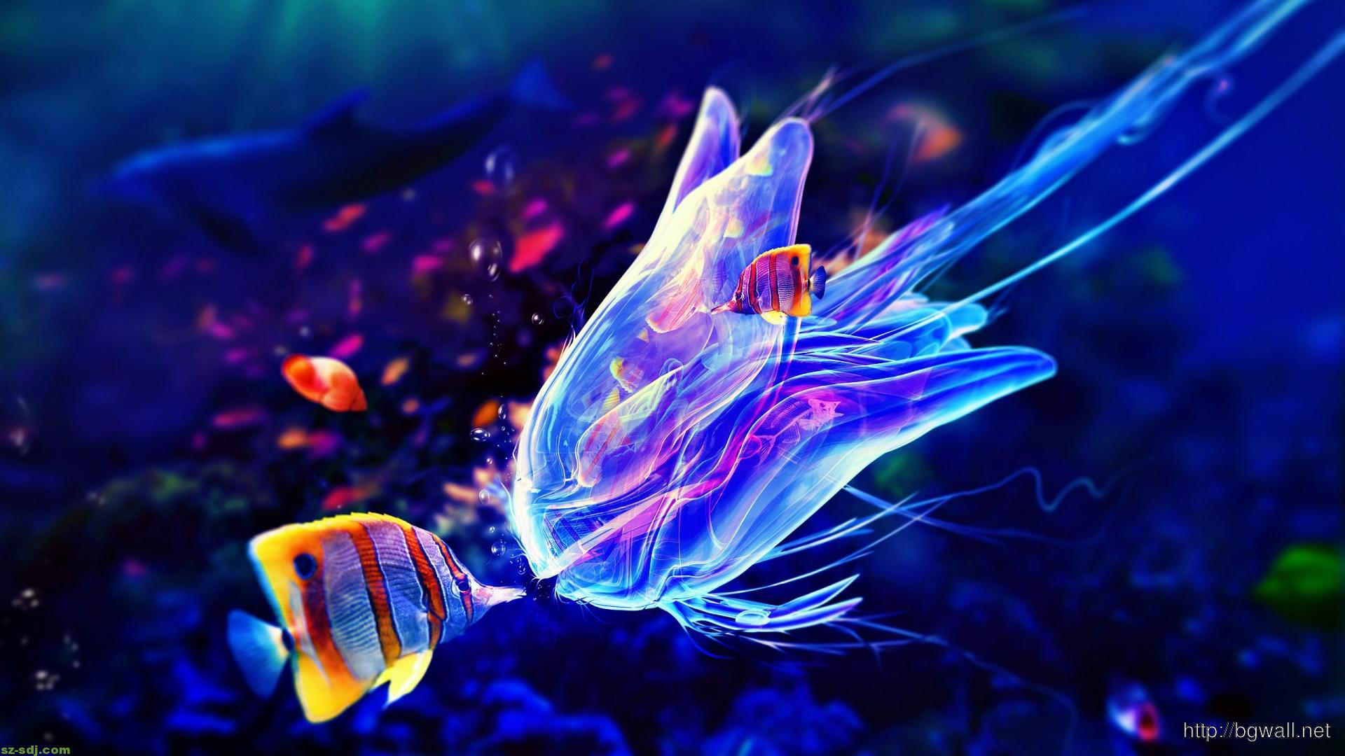 colorful jellyfish wallpaper widescreen � background