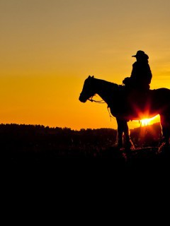 cool-cowboy-desktop-wallpaper