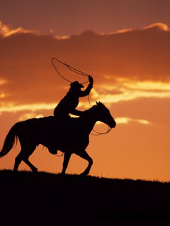cowboy-with-horse-wallpaper-widescreen