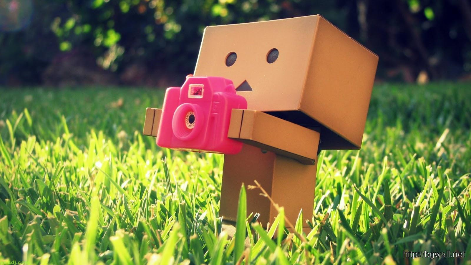 danbo-with-a-camera-wallpaper-widescreen