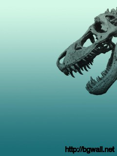 dinosaurs-skelton-wallpaper-widescreen-hd